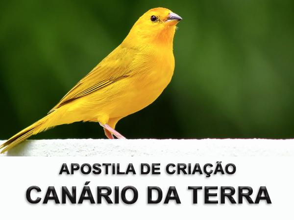 Apostila de criação de canário