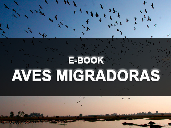 Ebook Aves Migradoras