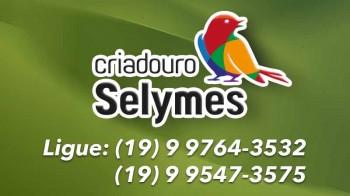 Criadouro Selymes  Jaguariúna/SP