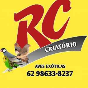 rc-criatorio-de-aves-exoticas