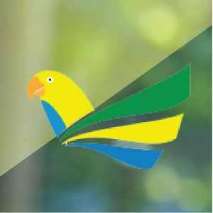 criadouro-brasil-aves