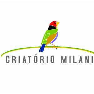 criatorio-milani