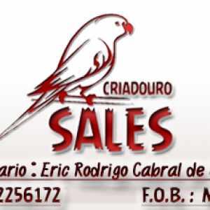 criadouro-sales