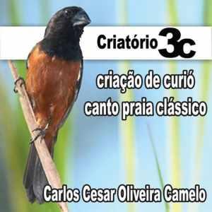 criatorio-3c
