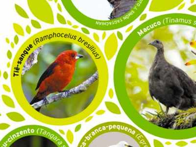 Santos cataloga aves e locais para a prática de observação
